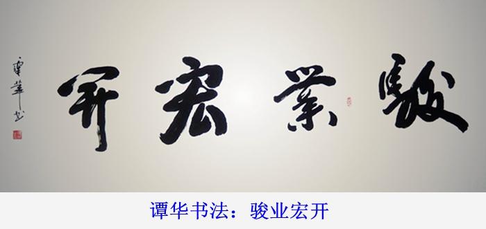 谭华书法作品欣赏67