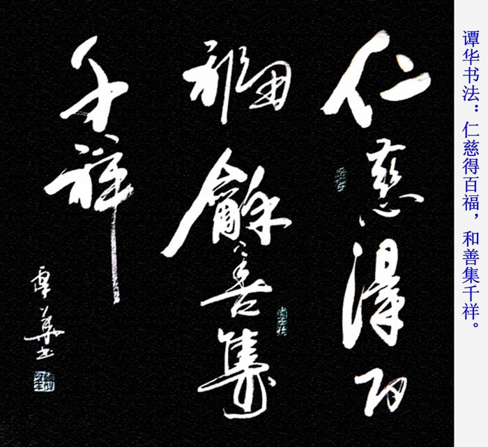 谭华书法作品欣赏71