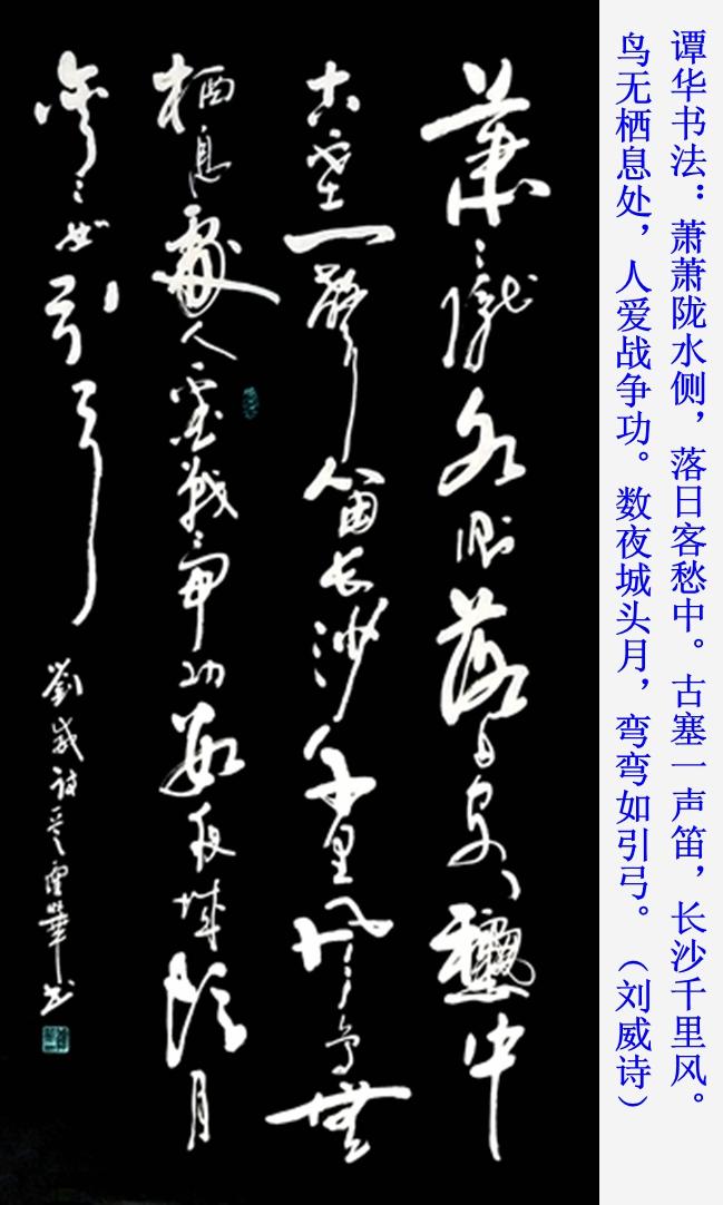 谭华书法作品欣赏162