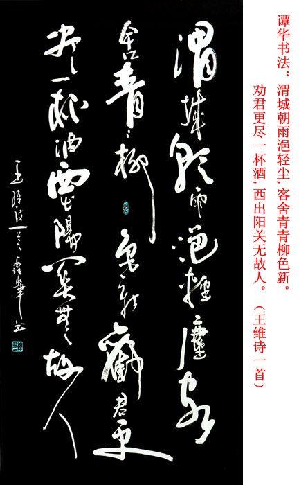 谭华书法作品欣赏160
