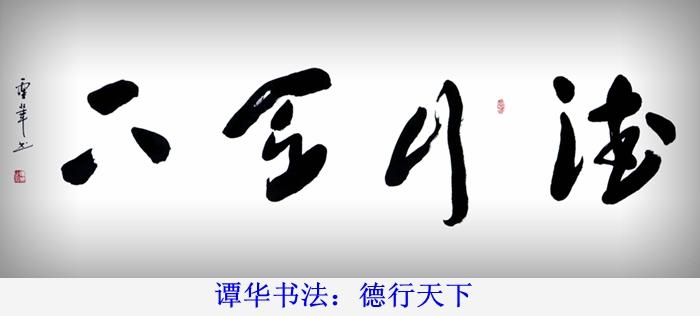 谭华书法作品欣赏66